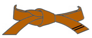 ceint-marron-2